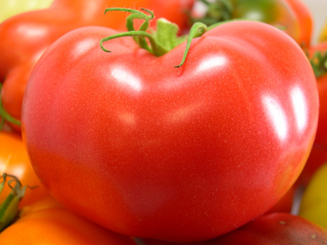 Nitzsche_Jersey-Grown-Red-Tomato-Cluster-1100×825